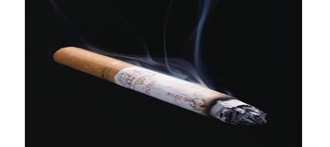 população adulta diz ser fumante